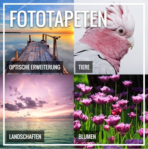 Fototapeten (Bild: Pixers)