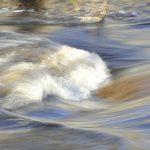 Die Wasserqualität – Ist Wasser gesund?